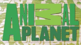 logo-animal-planet